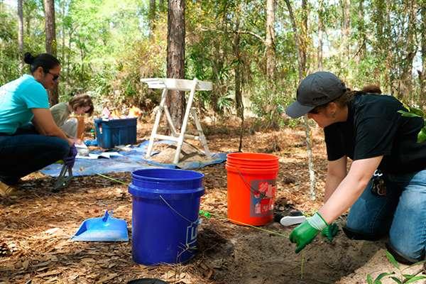 Forensic investigators excavating clandestine animal graves.